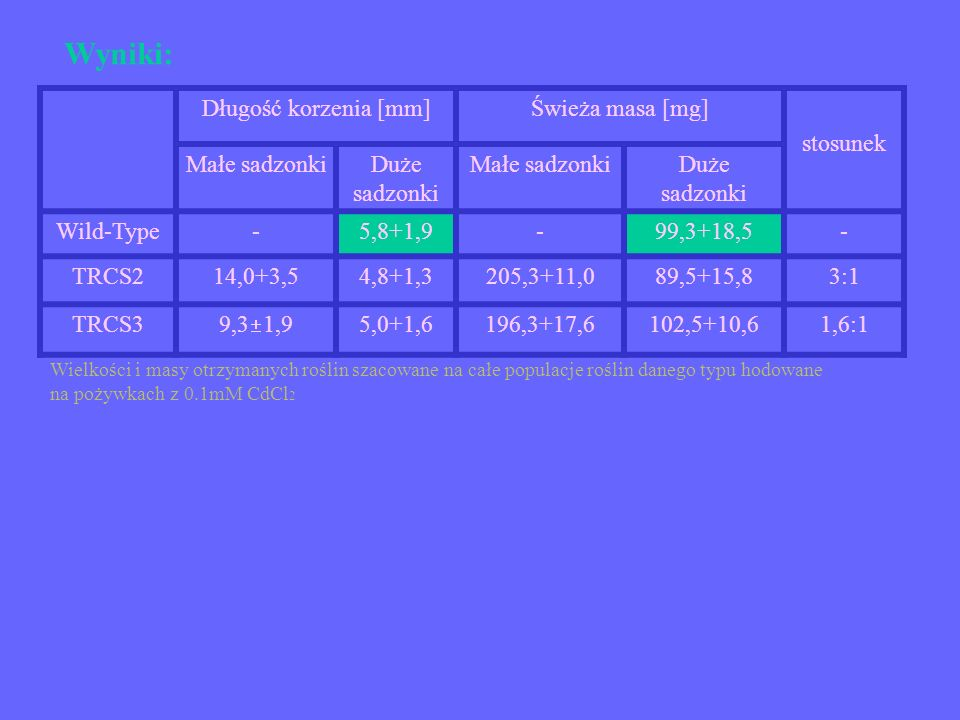 Wyniki: Długość korzenia [mm] Świeża masa [mg] stosunek Małe sadzonki